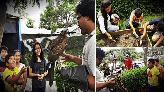 Zoo Huachipa presenta sus talleres de verano para niños y adolescentes