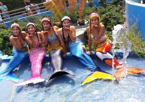 Bautizan a Sirenas en el Acuario más grande del país
