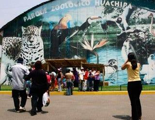 Latinoamérica: Los 11 mejores Zoológicos de la región