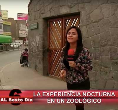 La experiencia nocturna en un Zoo: todo un espectáculo en Huachipa