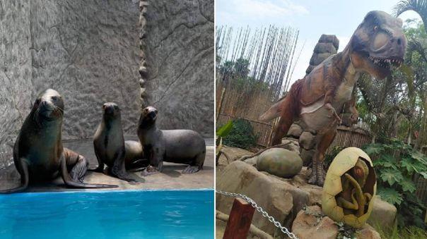 Semana Santa | Zoológico de Huachipa ofrece actividades virtuales con lobos marinos y documental de dinosaurios